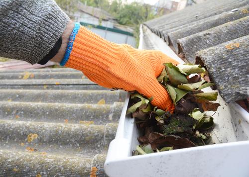 Cleaning rain gutters