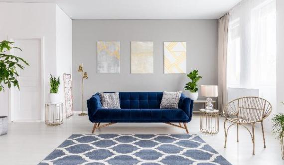 18 Living Room Rugs Ideas Expert Advice For Vibrant Space
