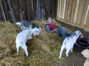 goats21