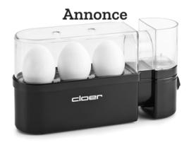 æggekoger test