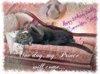 Princess Savvy