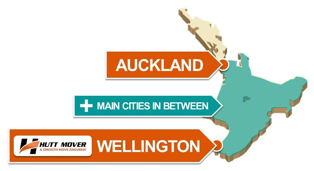 Wellington City Movers, Moving Company Hutt Mover