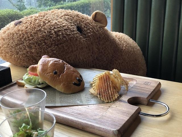 伊豆シャボテン公園のランチ、お土産のおすすめは?