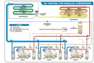Oil Control for Parallel Compressor | Hermawan's Blog (Refrigeration and Air Conditioning Systems)