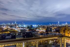 17 Monitor - Brooklyn Rooftop Gardens - Highview Creations