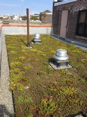 Logan Gardens - NYC Rooftop Gardens - Highview Creations
