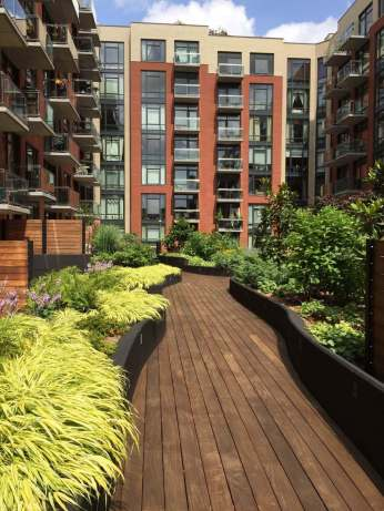 Highview Creations-101 Bedford-Green Roofs NYC 5