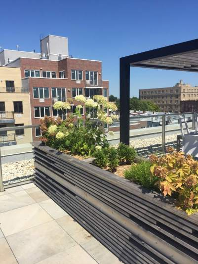 Highview Creations-FH Green Roof-NYC-1