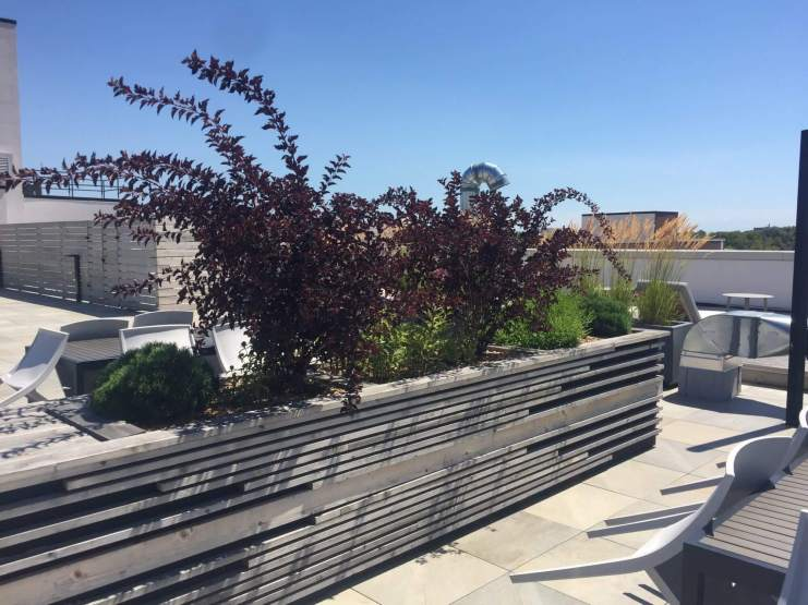 Highview Creations-FH Green Roof-NYC-12