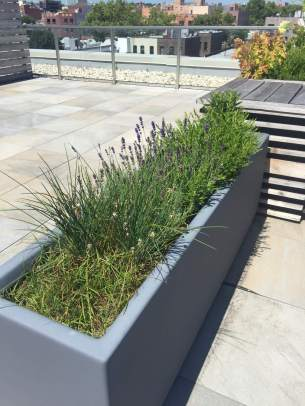 Highview Creations-FH Green Roof-NYC-7