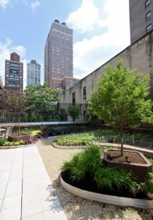 Highview Creations-Lenox Hill Green Roof-NYC-13