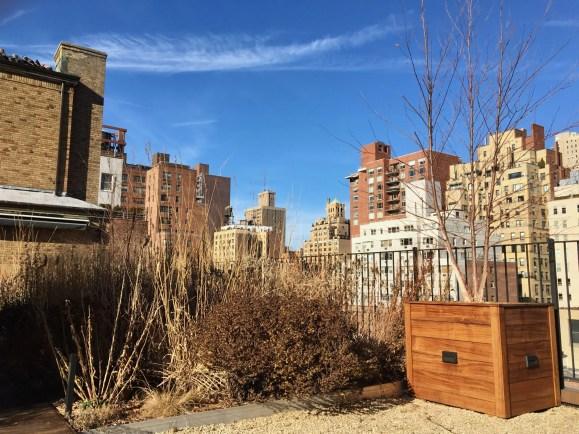 Pent house meadow and skyline Manhattan