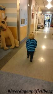 Barnekirurgisk Barnesenteret Ullevål Universitetssykehus