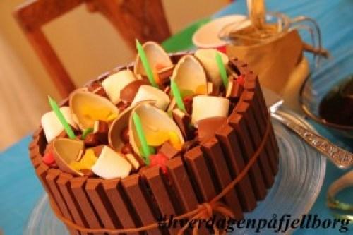 Sjokoladekake med masse, masse godteri