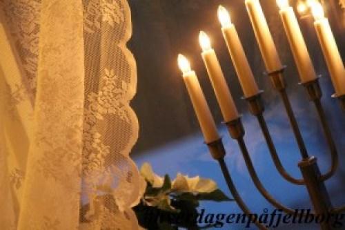 Adventsstake og julestjerner