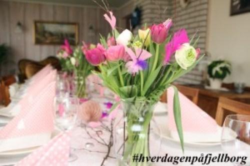 Fastelavn og faste: Fastelavnsris, tulipaner og ranukler