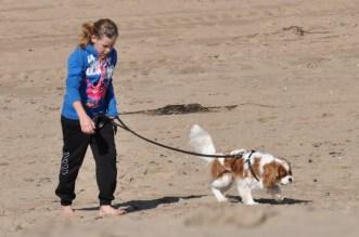 beachhandbaltoernooi september 2012 063 (800x531)