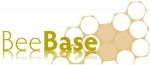 BeeBase logo