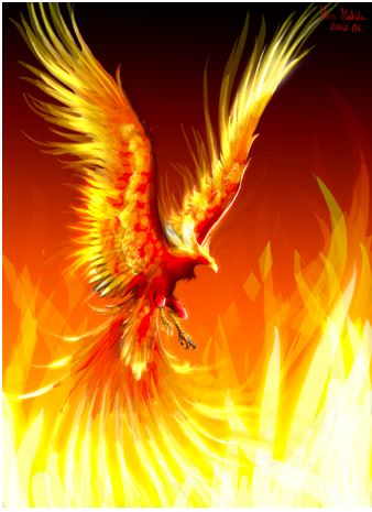 Be The Phoenix Rise From The Ashes Books Blogs And Butterflies