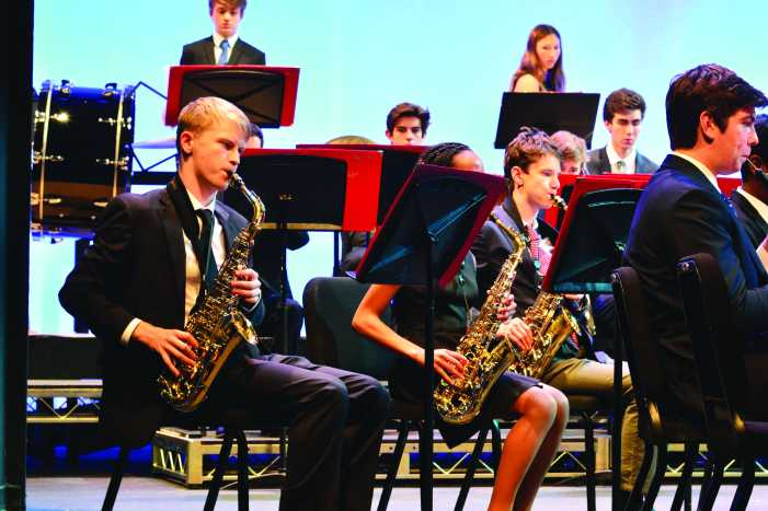 Musicians perform in instrumental concert