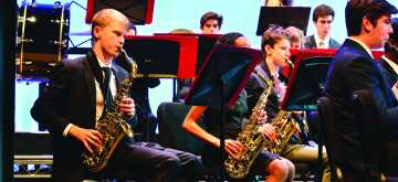 Musicians perform in instrumental concert