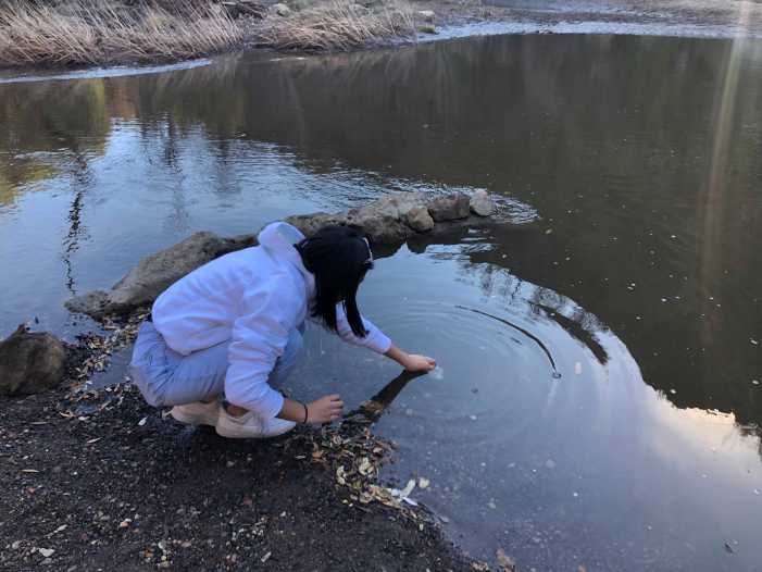 Beyond the classroom: APES classes visit state park to test pH levels of creek water