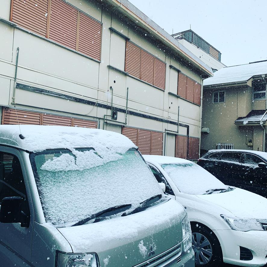 雪が降った3月