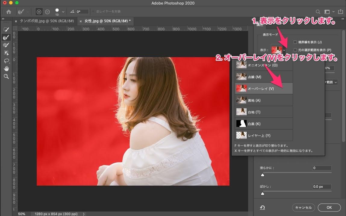 Photoshop:選択とマスクで画像を切り抜き貼り付ける