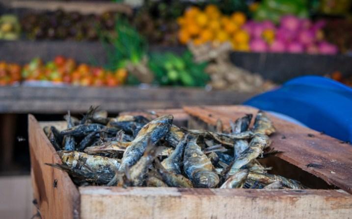 Sušené ryby na trhu
