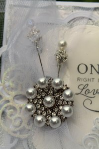 once in awhile brooch closeup