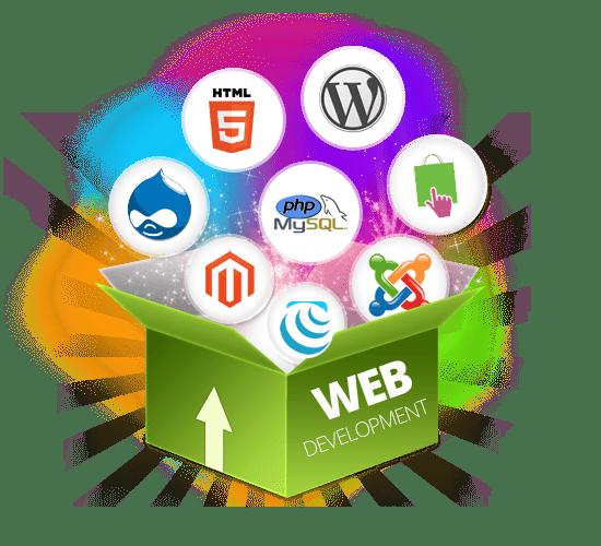 Web development in Hyderabad