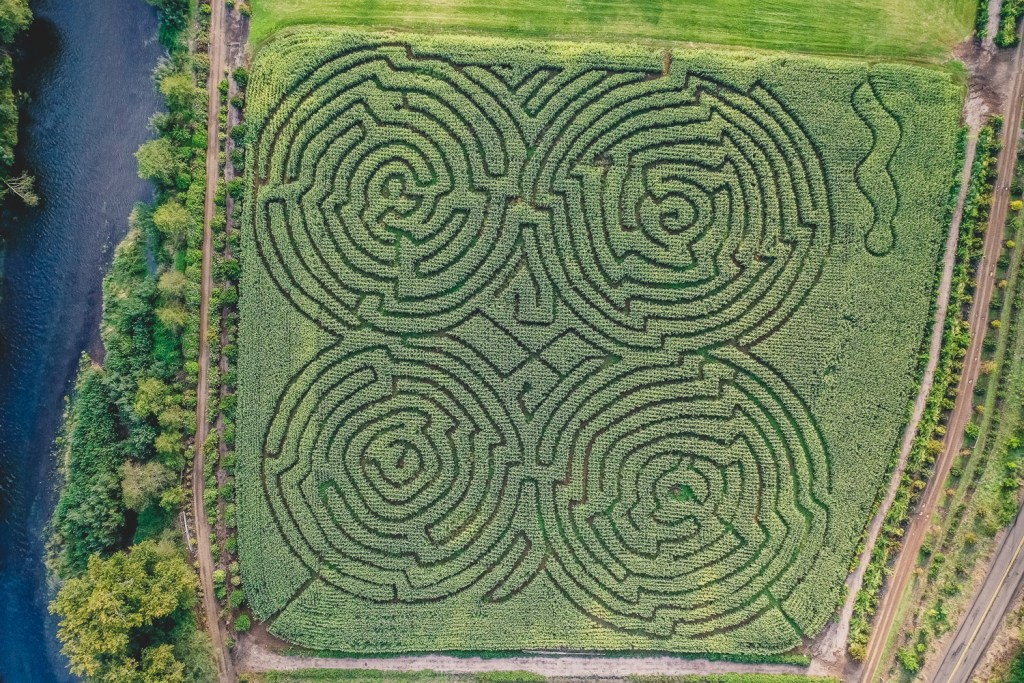 corn mazes in oregon