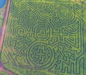 corn maze in tillamook