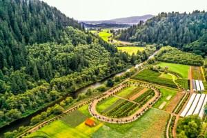 Corn Maze Farm History at Kilchis River Pumpkin Patch and Corn Maze