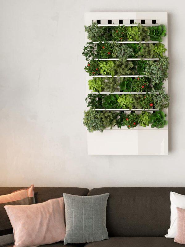 Smart home indoor garden #smart #smartgarden #indoorgarden #verticalgarden