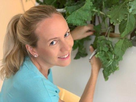 Harvesting from indoor garden