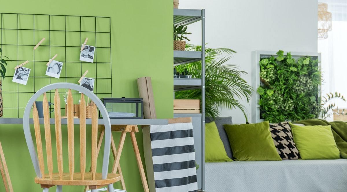 Indoor garden in the room