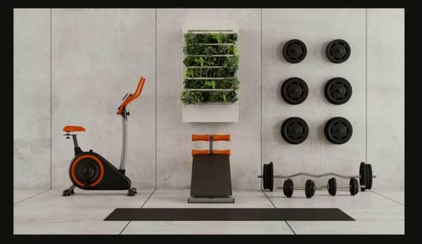 Smart-Indoor-Garden-(24)