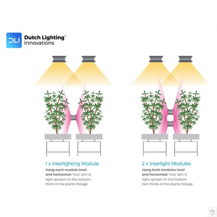 dutch lighting innovations diode series 96 watt interlight led grow light 120 277 volt is no longer available