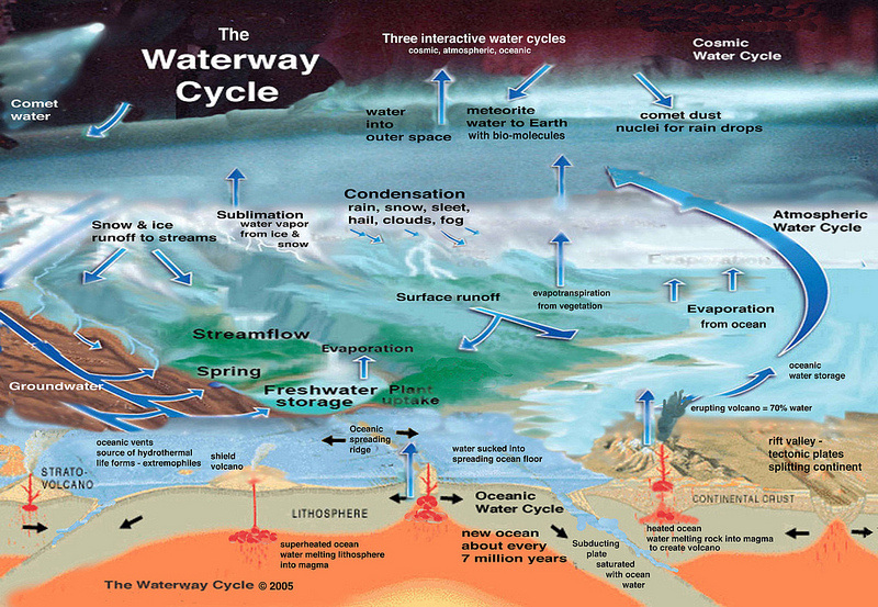 The Steps Of The Hydrologic Cycle