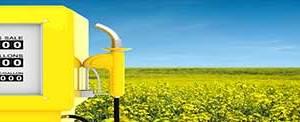 biocombustibles y energía renovable