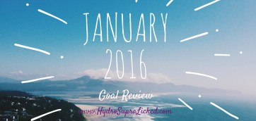 January goal review 2016