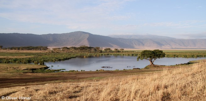 View of Ngoitokitok spring