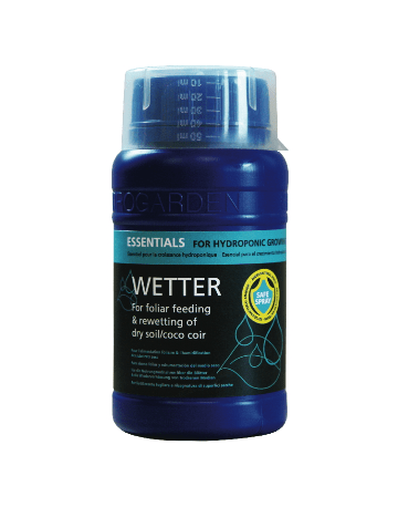 Essentials Wetter
