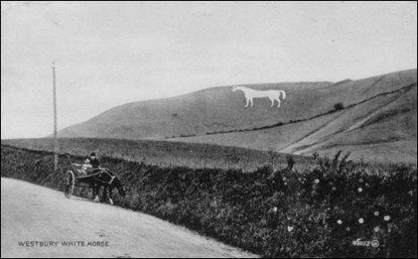 Westbury White Horse (1900s, photo courtesy of Westbury Visitor Centre, 1 High Street, Westbury)