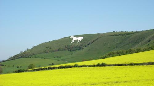 The White Horse of Westbury (photo credit: Lukasz J.)