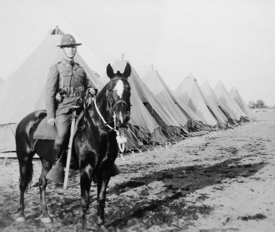 """Roy W. Walholm, my grandfather - caption in my mother's album says """"Black Horse Cavalry"""""""