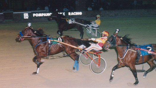 Armbro Noise winning a race at Pompano Park on January 8, 1996
