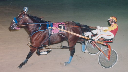 Armbro Noise winning a race at Pompano Park on November 8, 1995