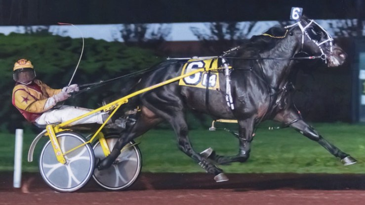 Credit Approved winning a race at Pocono Downs on May 3, 2011. Trained by Brad Irvine